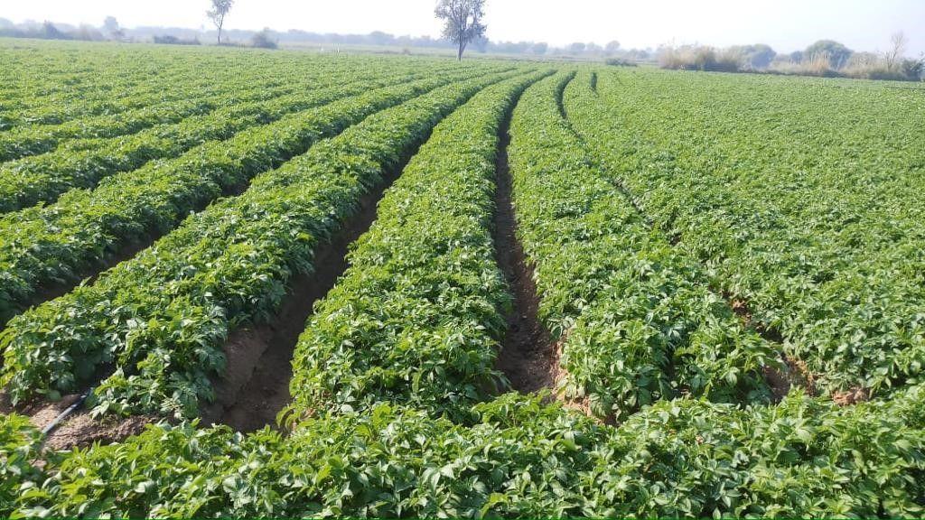 why the world needs sustainable irrigation